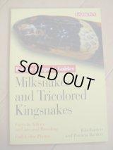 洋書(Milksnakes and Tricolored Kingsnakes)