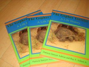 画像1: 洋書(The Gopher Tortoise)ソフトカバー版