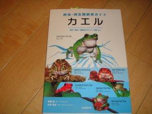 画像1: 爬虫・両生類飼育ガイド(カエル)