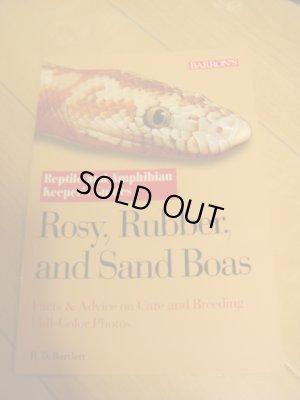 画像1: 洋書(Rosy,Rubber,and Sand Boas)